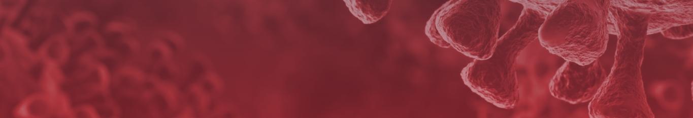 Enfrentando o coronavírus - COVID-19