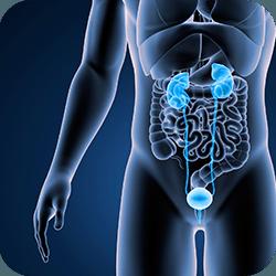 Infográfico Câncer de Próstata